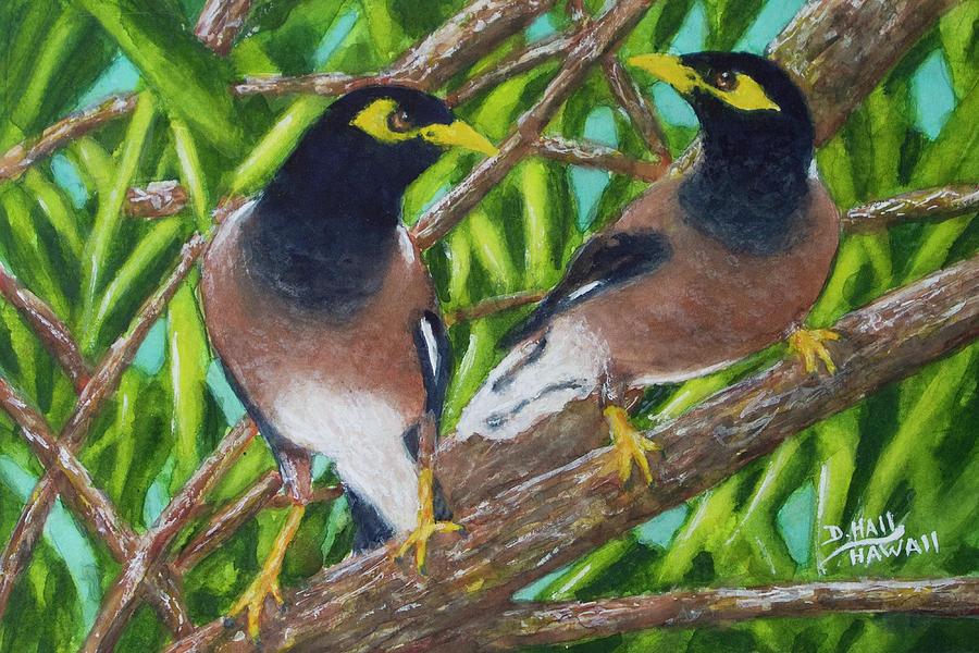 Mynah Bird Painting - Mynah Birds #474 by Donald k Hall