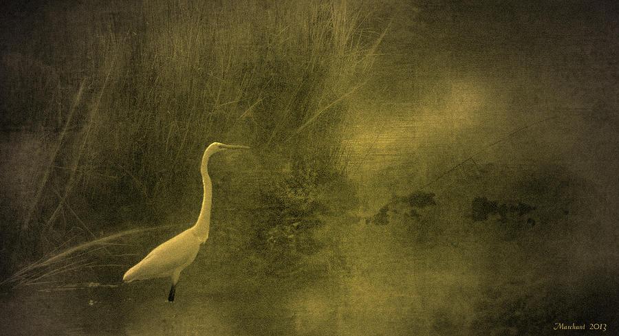 Myrtle Beach Crane by Marilyn Marchant