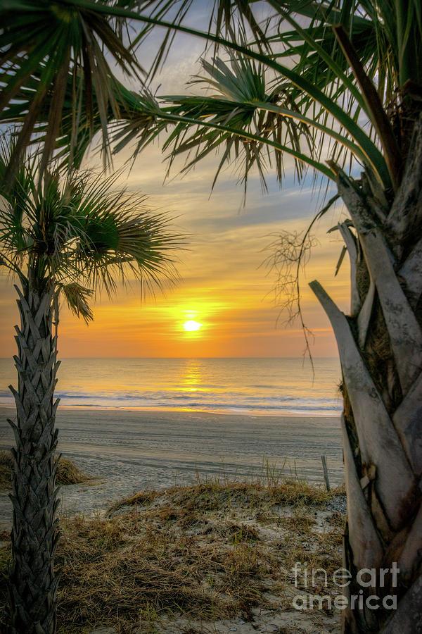 Myrtle Beach Photograph - Myrtle Sunrise by Matthew Trudeau