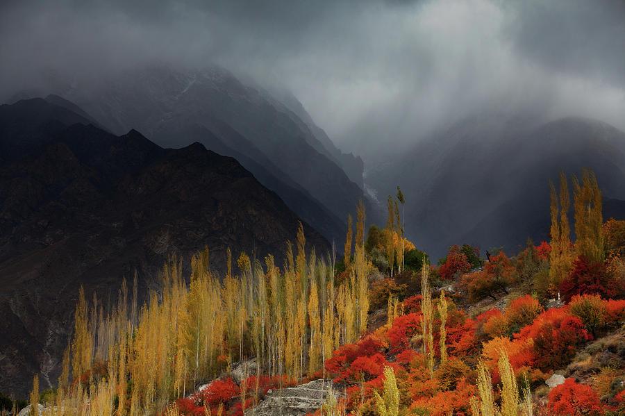Mist Photograph - Mystery Mountains by Awais Yaqub