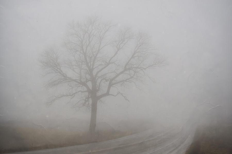 Mystery Road 2 by Steve L'Italien
