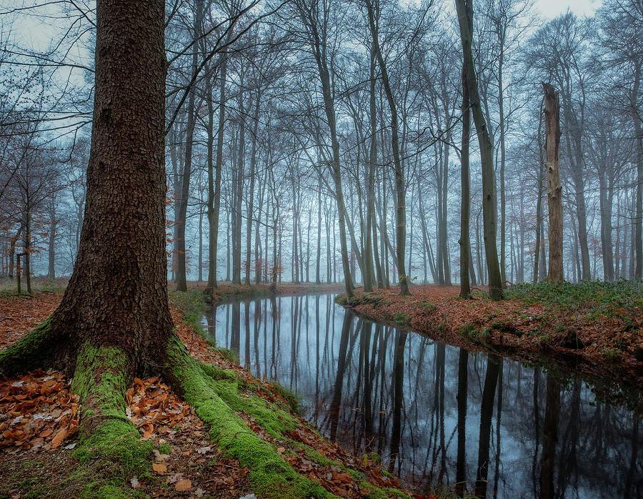 Mystic Voorstonden by Mario Visser