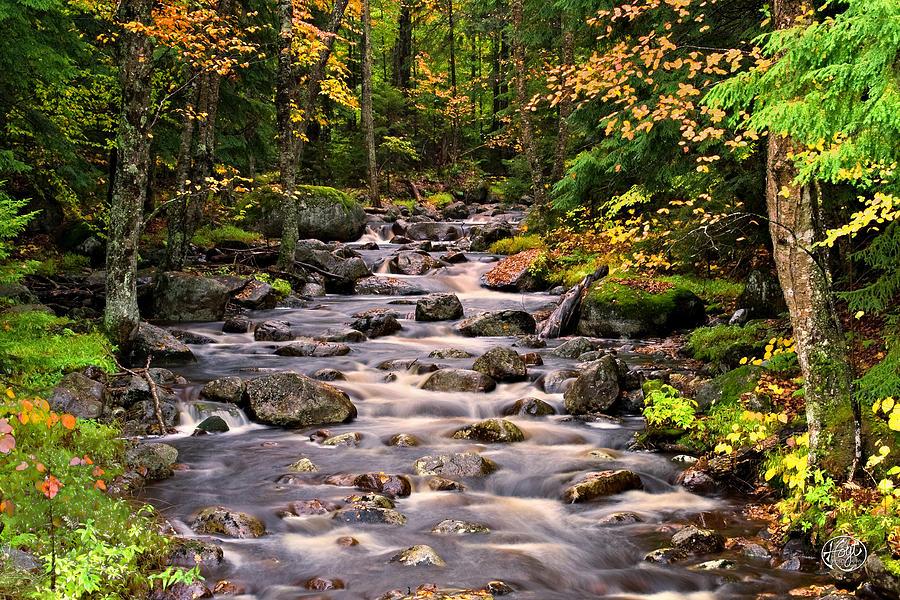 Adirondack Mountains Photograph - Mystical Mountain Stream by Brad Hoyt