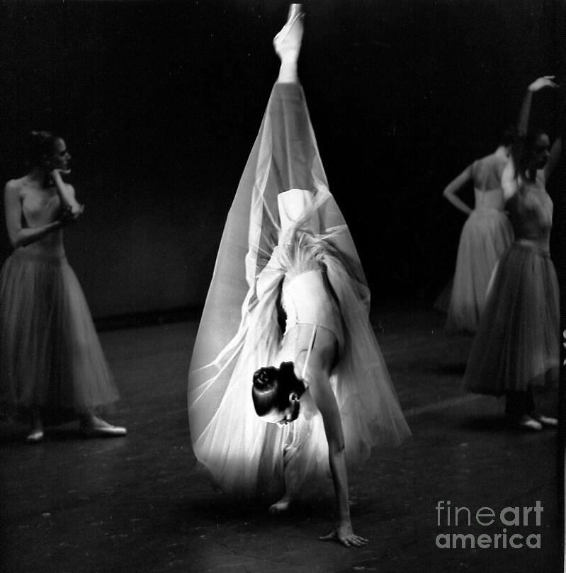 N Y C Ballet Company Dancer In Handstand Photograph by Jesse Gerstein