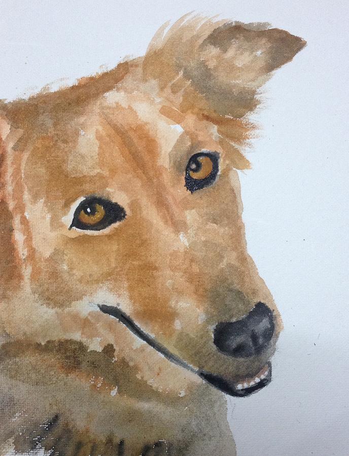 Dog Painting - Naanu by Elizabeth Mundaden