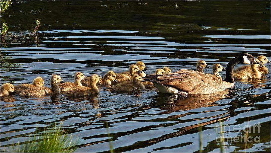 Nanny Goose by Julia Hassett