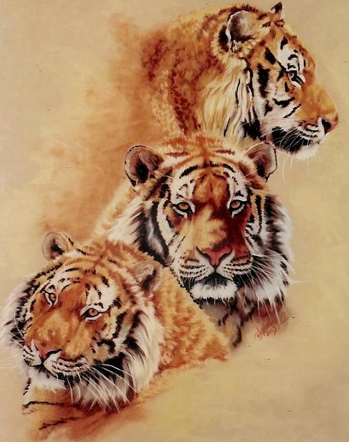 Tiger Pastel - Nanook by Barbara Keith