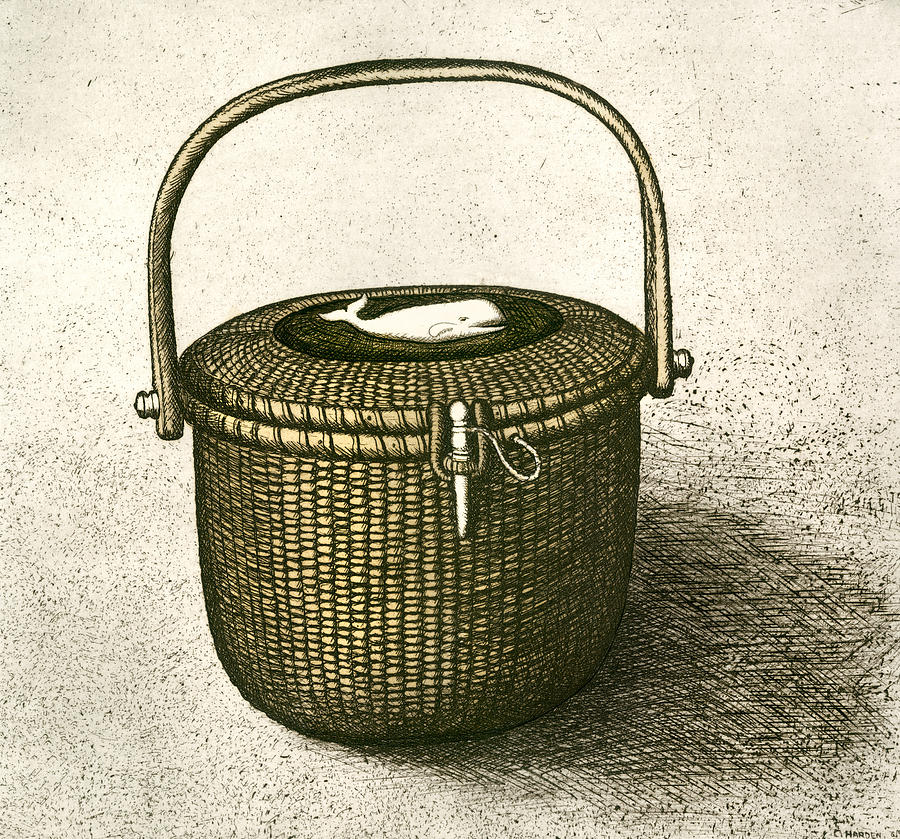 Nantucket Drawing - Nantucket Basket by Charles Harden