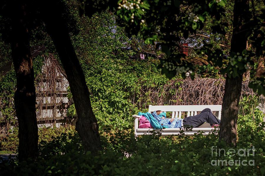 Copy Space Photograph - Nap On A Park Bench by Jukka Heinovirta