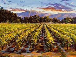Landscape Print - Napa Sunset by Vicki Asp
