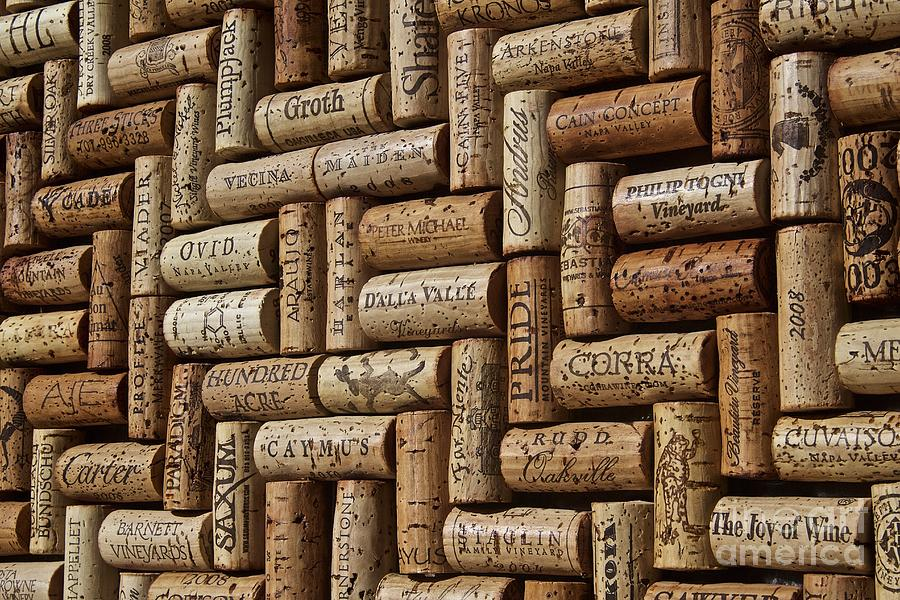 Wine Cellar Photograph - Napa Valley Wine Auction by Anthony Jones
