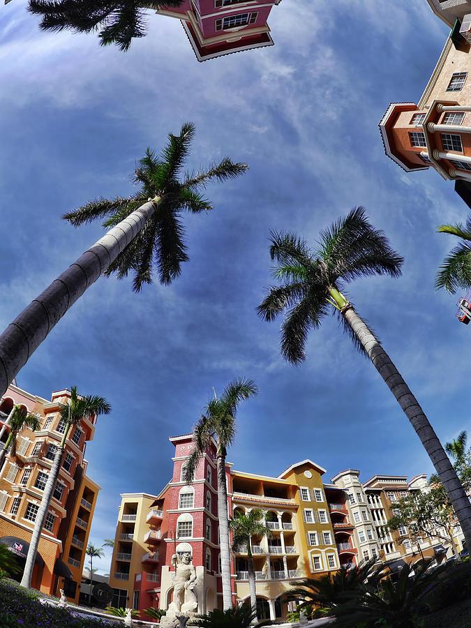 Naples Florida Vii Photograph by Tina Baxter