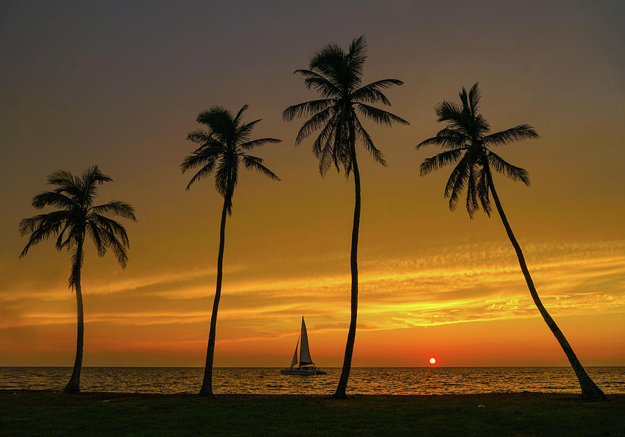 Naples Sail Sunset Photograph