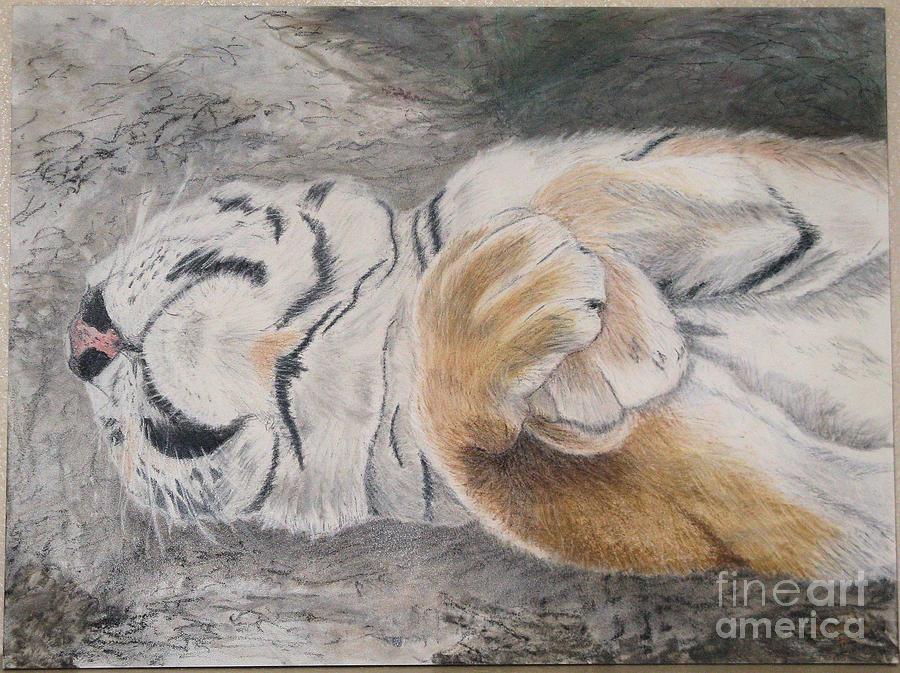 Animal Painting - Napping by Maris Sherwood