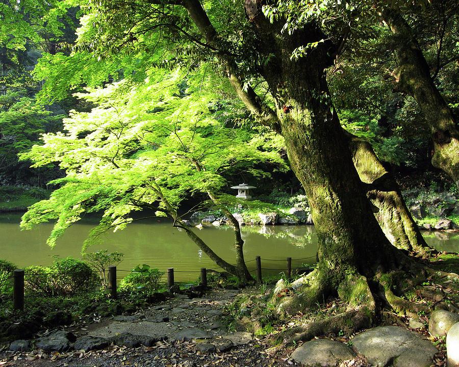 Landscape Photograph - Narita Temple Gardens by David L Griffin