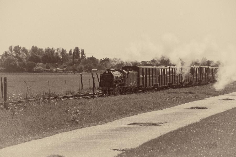 Narrow Gauge Steam Train by Roy Pedersen