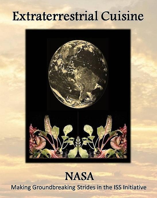Nasa Poster Mixed Media by Brenda Garacci