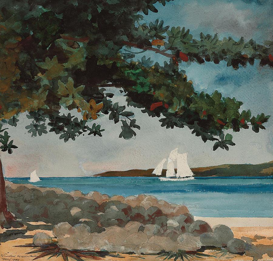 Nassau Painting - Nassau   Water And Sailboat by Winslow Homer