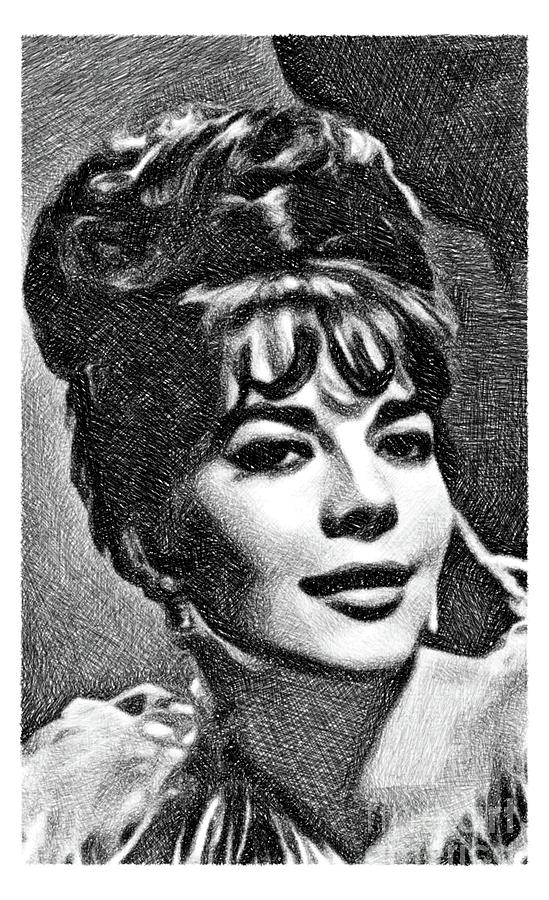 Natalie Wood, Vintage Actress By Js Drawing