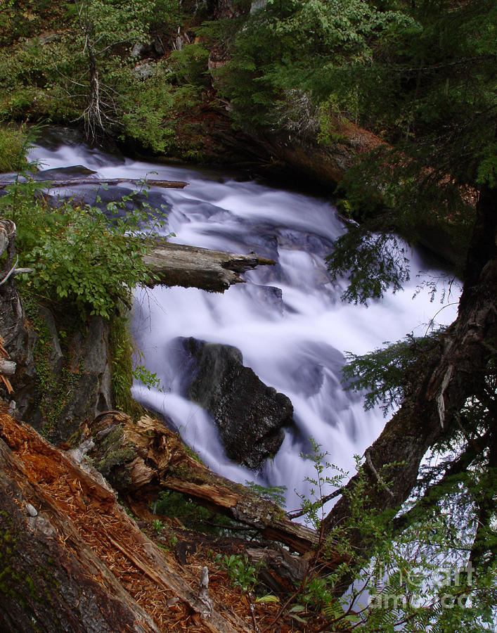 Waterfall Photograph - National Creek Falls 03 by Peter Piatt