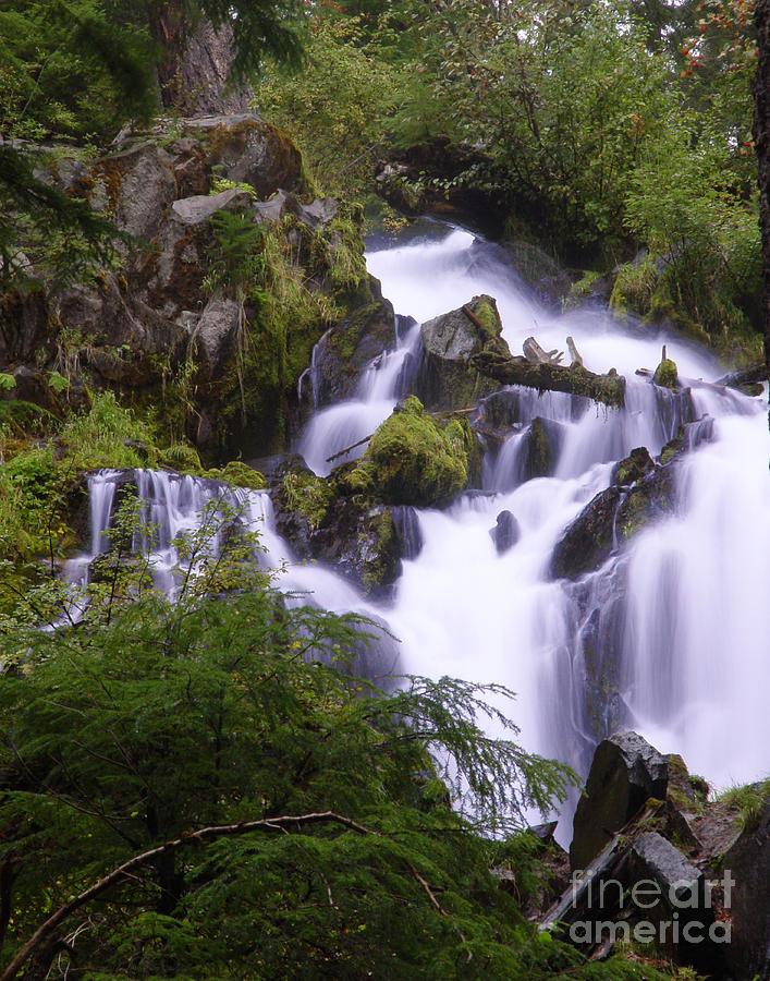 Waterfall Photograph - National Creek Falls 05 by Peter Piatt