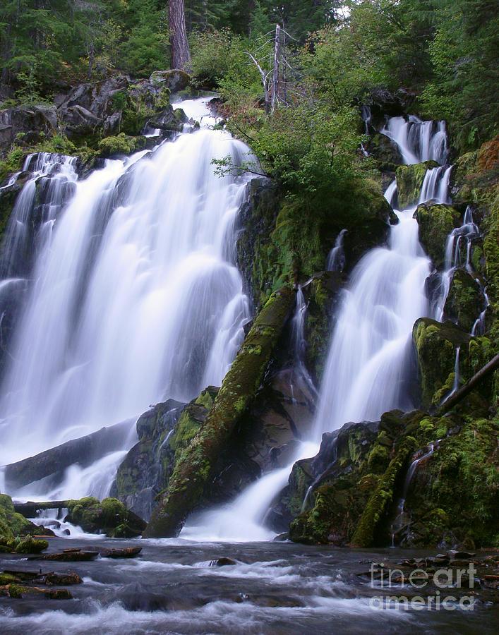 Waterfall Photograph - National Creek Falls 09 by Peter Piatt