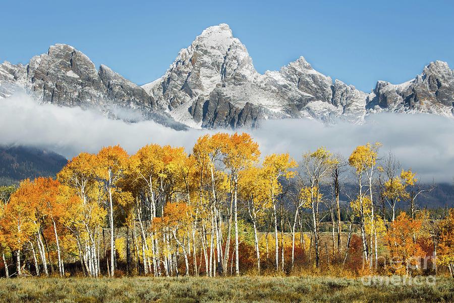 National Park Photograph