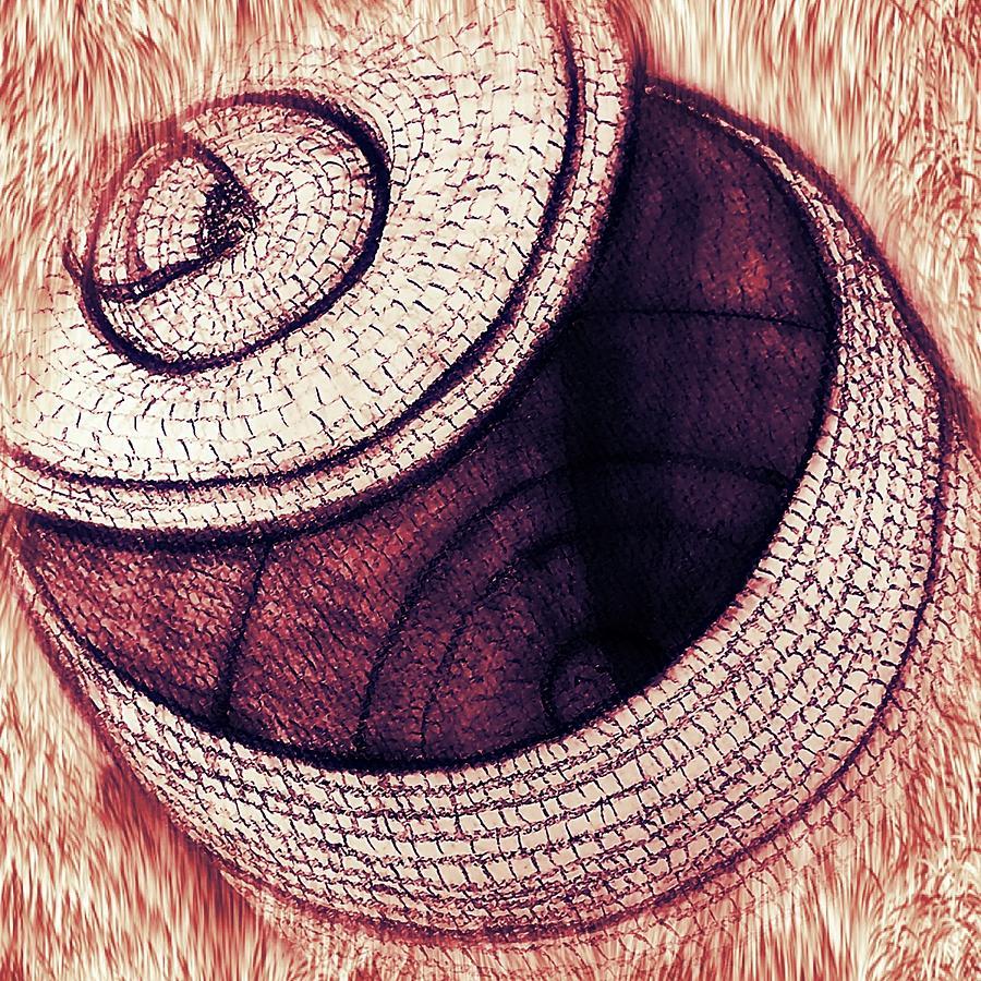 Native American Basket 2 Mixed Media