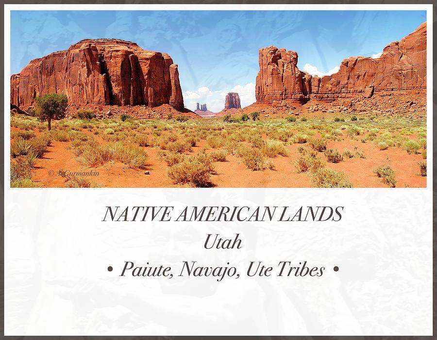 Desert Floor Photograph - Native American Land, Monument Valley, Navajo Tribal Park by A Gurmankin