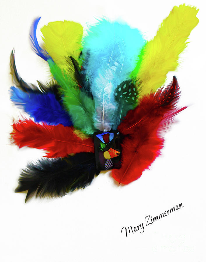 Native American Mixed Media - Native American Tribal Feathers by Mary Zimmerman