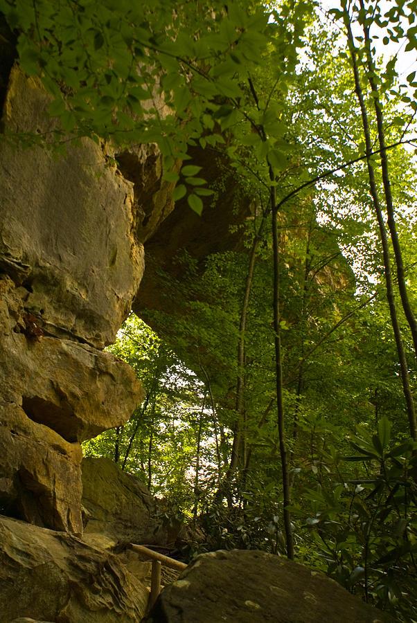 Natural Arch Photograph - Natural Arch by Douglas Barnett