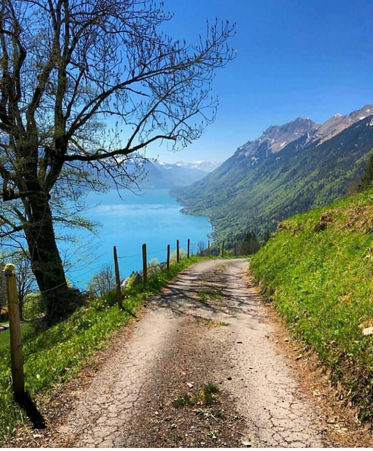 Nature Photograph - Natural Beauty Tourism Brienz Switzerland  by Rohit Kushwaha