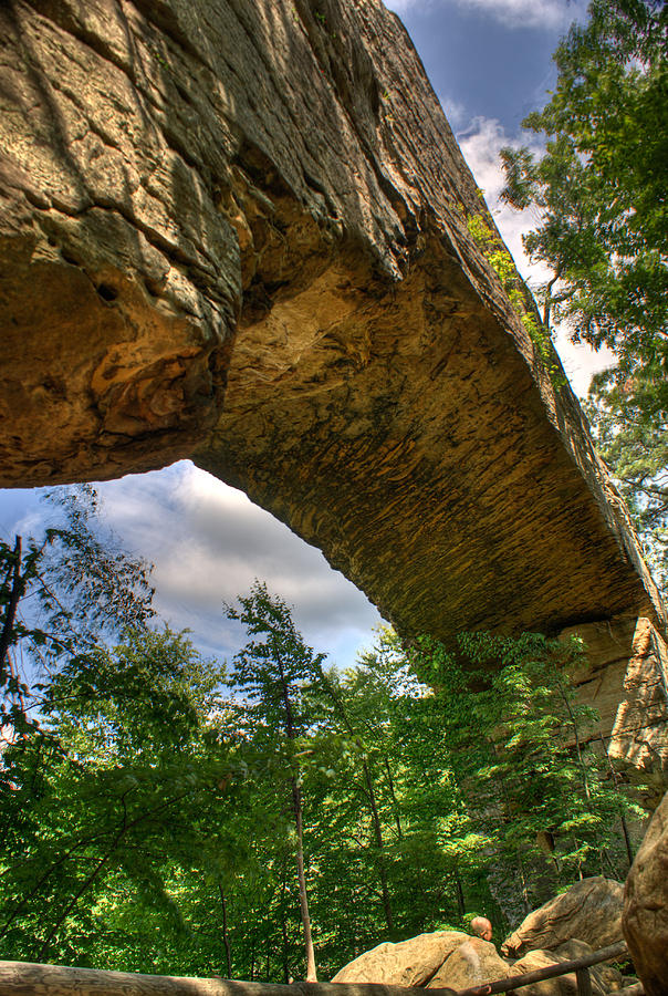 Natural Photograph - Natural Bridge Span by Douglas Barnett