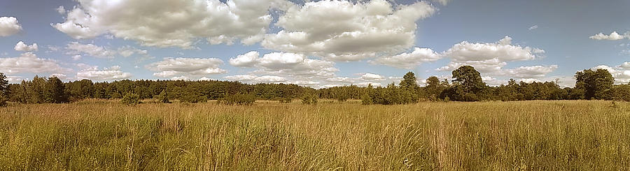 Natural Photograph - Natural Meadow Landscape Panorama. by Arletta Cwalina