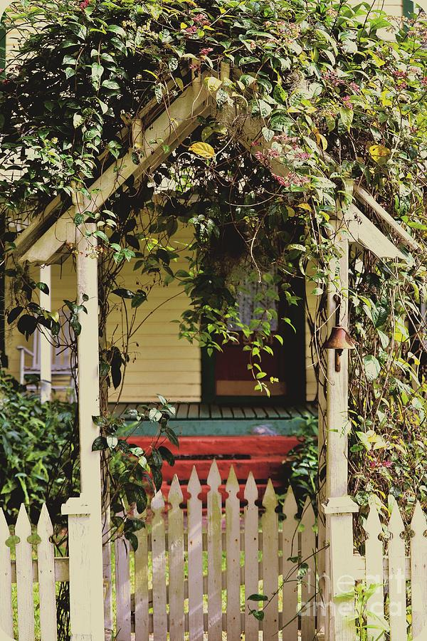 Vintage Photograph   Natural Vintage Garden Gate By Diann Fisher