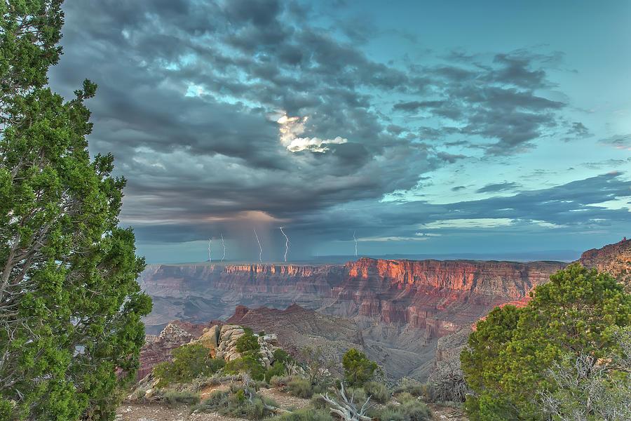 Natural Wonders by James Menzies