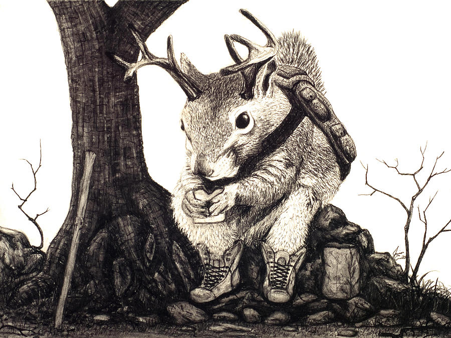 Animal Drawing - Nature Hike by Jaison Cianelli