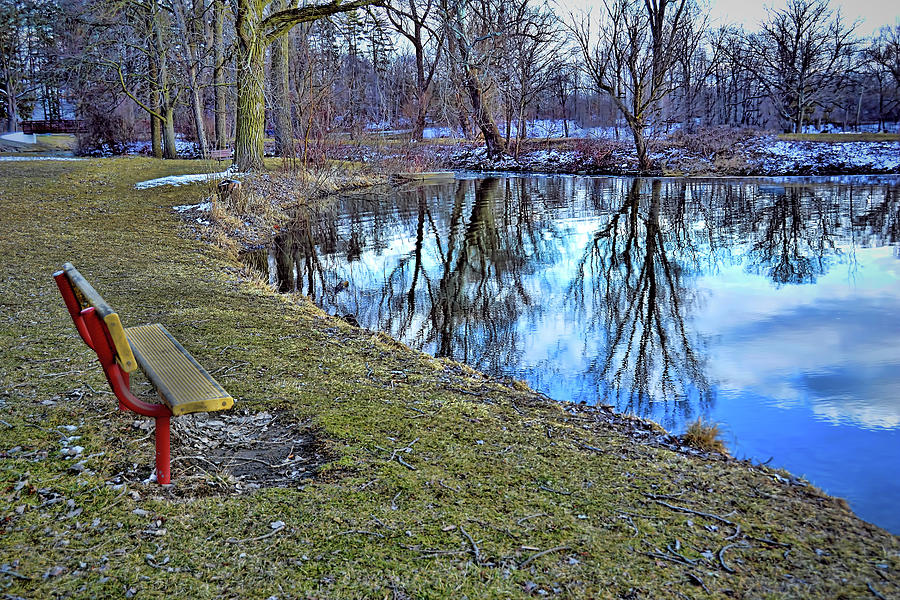 Nature Reflections Photograph