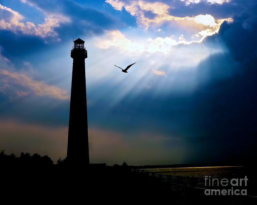 Lbi Photograph - Nature Shines Brighter by Mark Miller