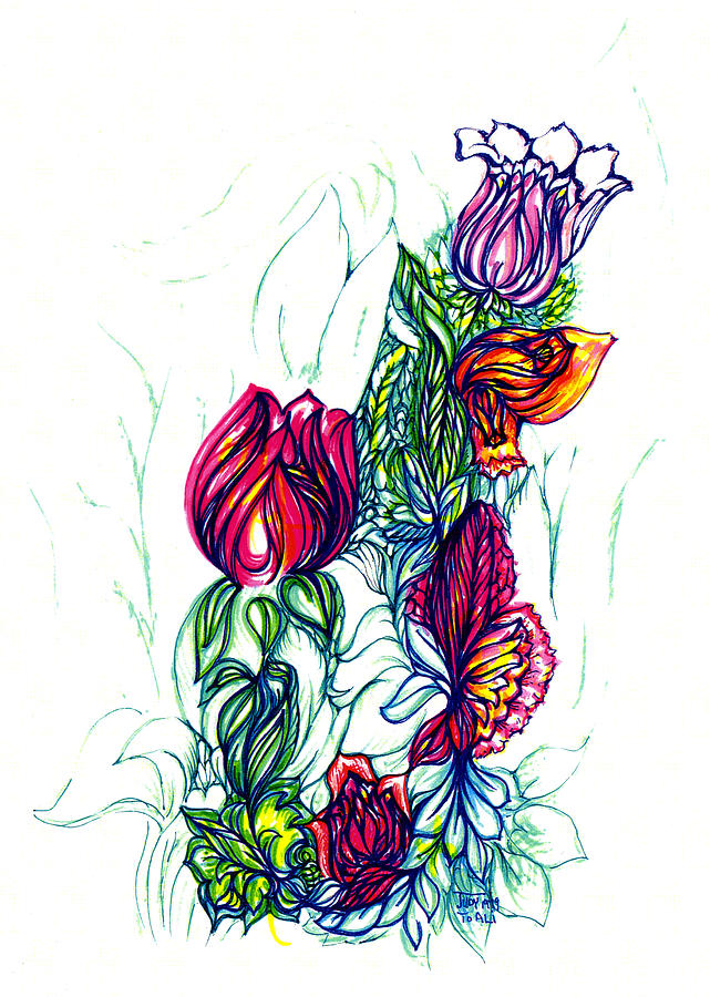 Natures Beauty Drawing by Judith Herbert