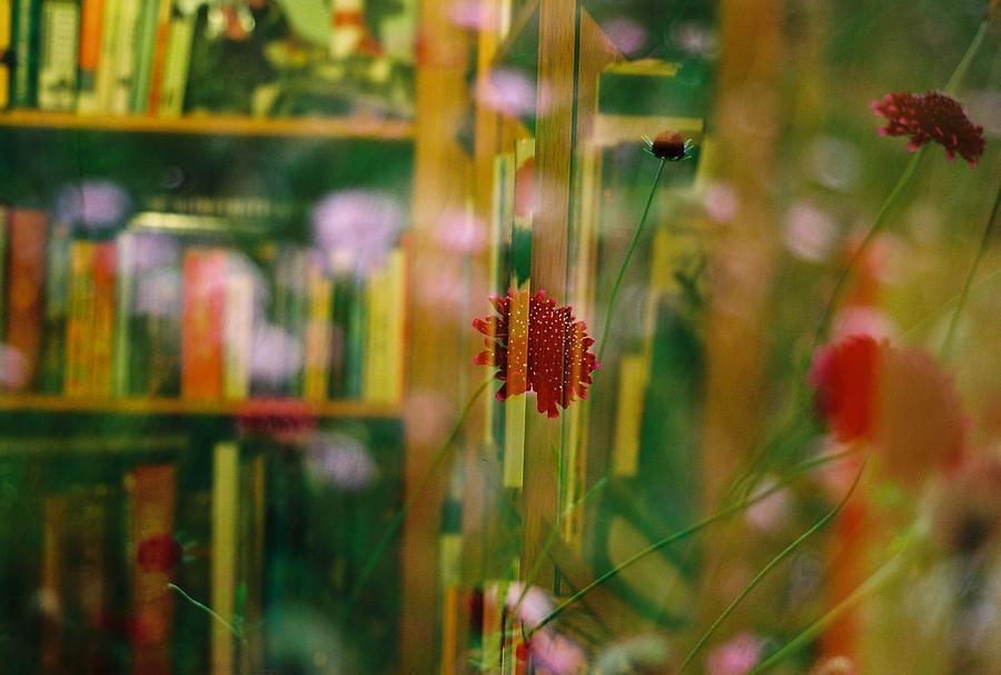 Film Photograph - Natures Books by Mason Julian