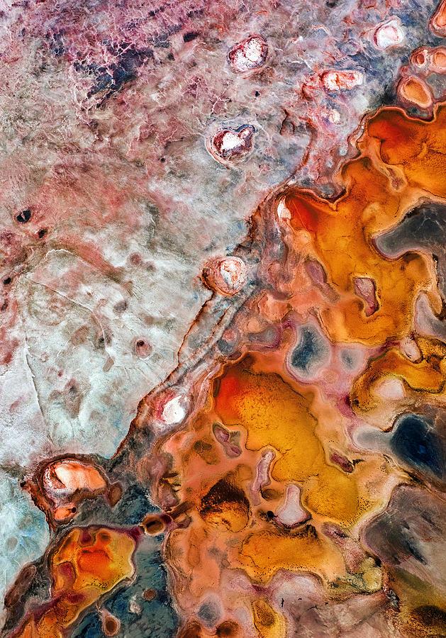 Kalbarri Photograph - Natures Canvas by Scott McCook