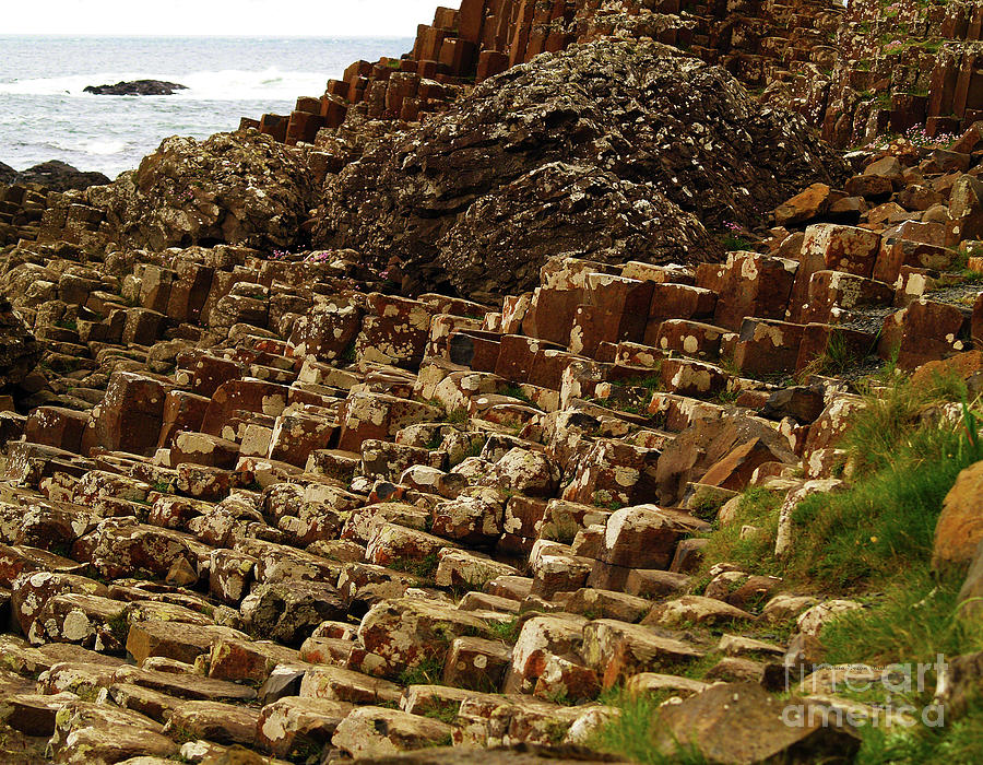 Natures Geometry I- The Giants Causeway by Patricia Griffin Brett