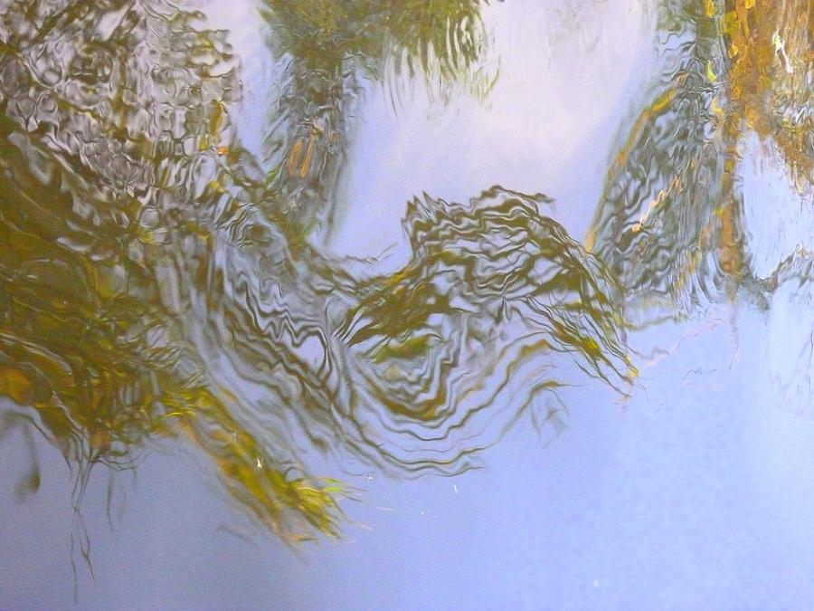 Nature Photograph - Natures Mirror by Florene Welebny