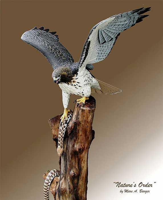 Red Tail Sculpture - Natures Order by Marc  Barger