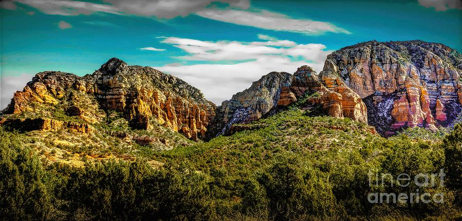 Nature Photograph - Natures Paintbrush by Jon Burch Photography