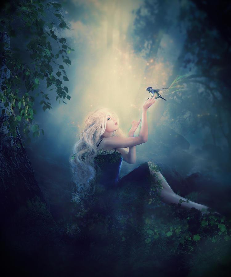 Nature's Wish by Karen Koski