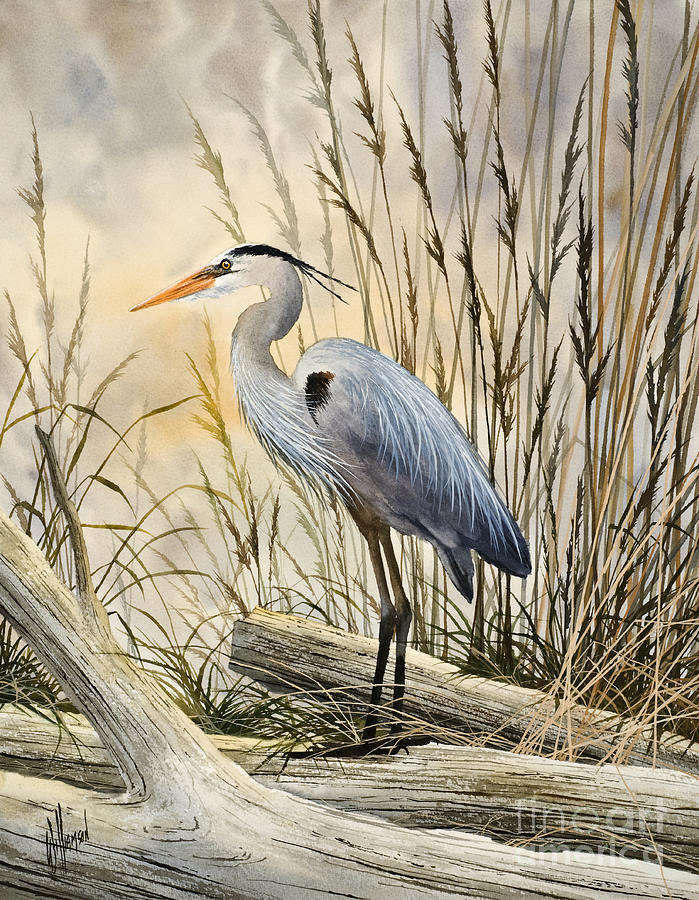 Great Blue Heron Painting - Natures Wonder by James Williamson