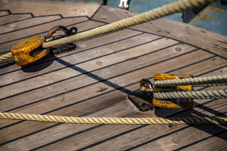 Nautical Ropes by Karol Livote