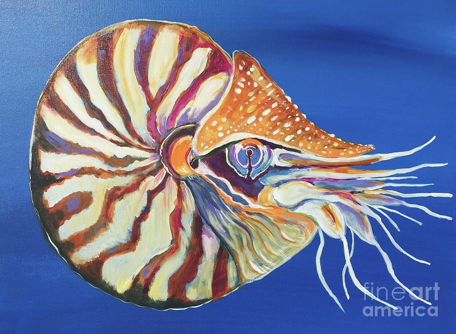 Nautilus by Kim Heil